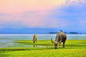 Sakonnakorn Thailand