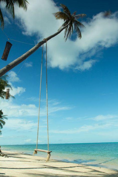 Swing hang from coconut tree over beach,Samui island ,Thailand