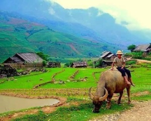 Life of rural in Thailand.
