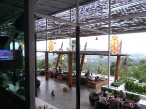 Gecko samui - Thailand,welcome!