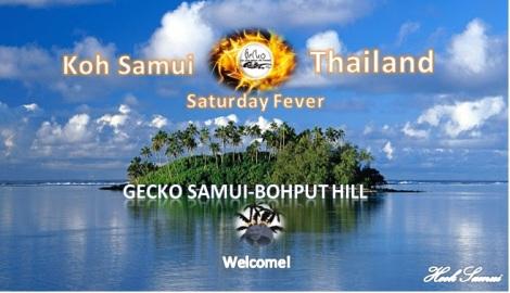 koh-samuisaturday-ferver-gecko-samui