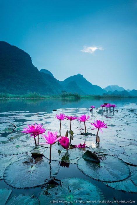 Good Morning Have A Great Weekend All Bancha Kimavaha Hooksamui
