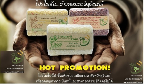 Hot promotion , jasmine rice from Surin - Thailand